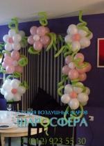 арка из шаров квадратная с цветами