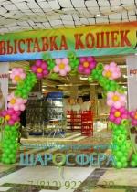 арка из шаров с цветками