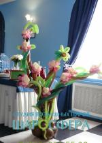 куст с цветам из шаров
